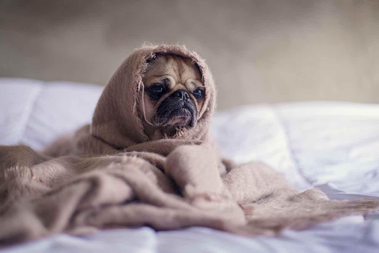 Betten machen ist ungesund